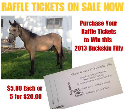 Raffle Filly